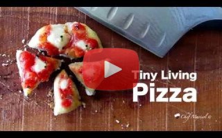 Tiny Living Pizza